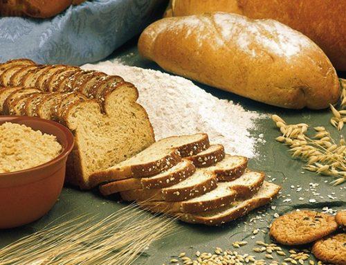 Les régimes protéinés, comment se faire un avis ?